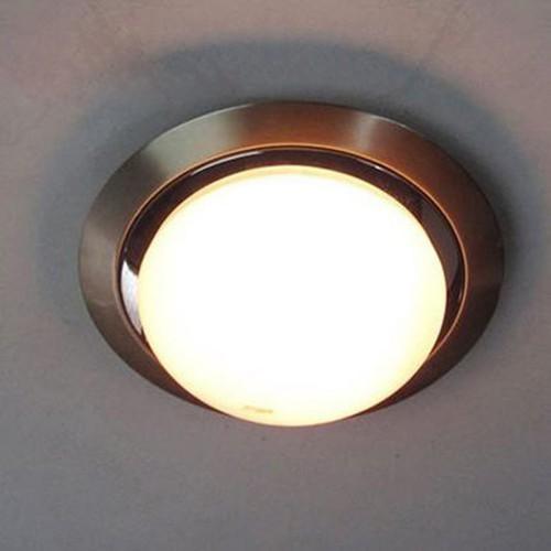 Потолочный светильник LOFT Silver Bat