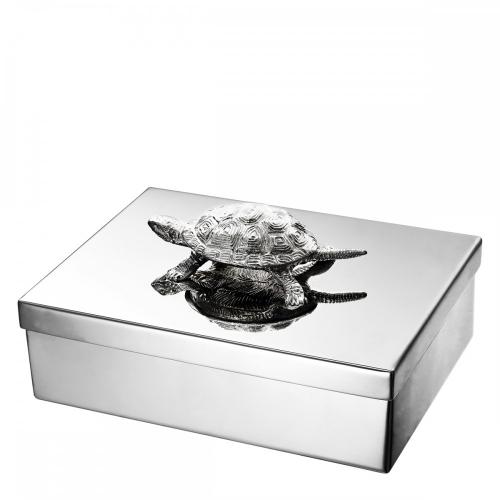 Tortoise 110277